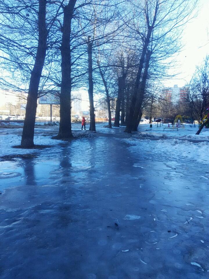 лёд гольяново лосиный остров